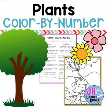 Plants - Color-By-Number
