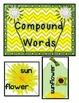 Plants -Dandelions Literacy Centers