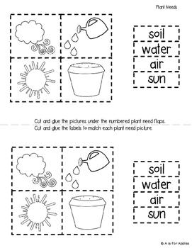 Plants: Differentiated Interactive Notebook Activities