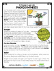 Plants: Differentiated Photosynthesis Reading Passage,Vocabulary & Comprehension