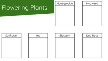 Plants Digital Resource