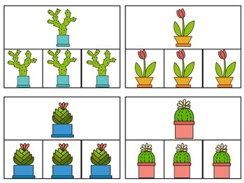 Plants Errorless and Matching Clip Cards