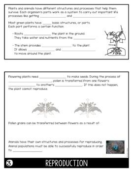 Plants Flip Book