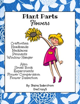 Plants - Flower