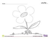 Plants & Flowers Spanish Lesson Complete Set - Plantas y Flores