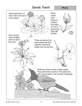 Plants: Flowers and Seeds