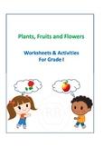 Plants  Fruits & Flowers worksheets for Grade 1