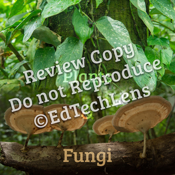 Plants, Fungi, and Tree Growth: Graphic Organizers for Gr PK-K