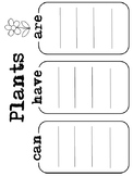 Plants Graphic Organizer