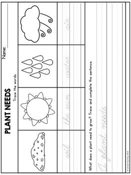 Plants Handwriting Lessons (Cursive Edition)