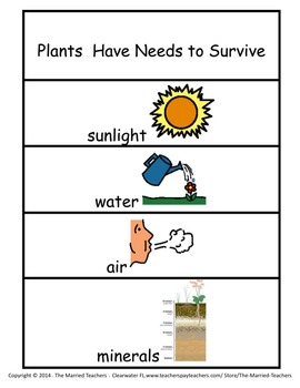 Plants Have Needs Foldable