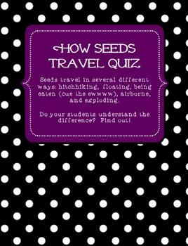 Plants: How Seeds Travel Quiz