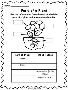 Plants: Informational Reading, Early Reader and Plant Journal