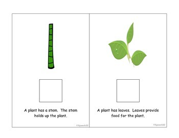 Plants Interactive Book