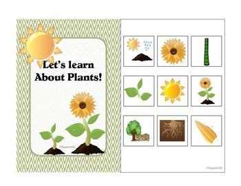 Plants Interactive Book