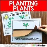Planting Plants - Plants Kindergarten - Plant Life Cycle