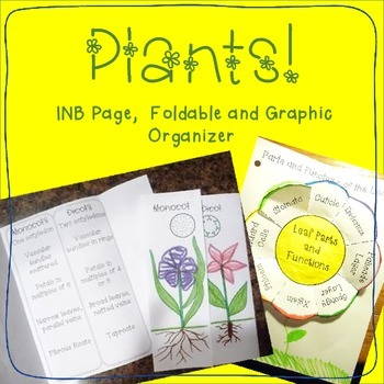Plants: Interactive NB page, foldable and graphic organizer