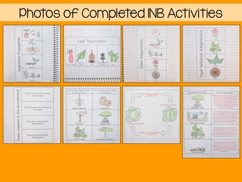 Plants Interactive Notebook Unit