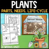 Plants Unit Kindergarten 1st Grade - Parts of Plants