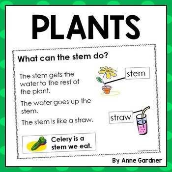 Plants Close Reading Pack for Students at Guided Reading Levels C , D and E
