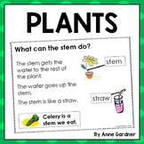 Plants Close Reading Pack: Guided Reading Levels C, D and E {DRA Levels 3 - 6}