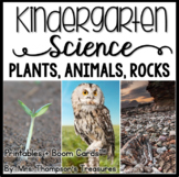 Plants Kindergarten Science NGSS