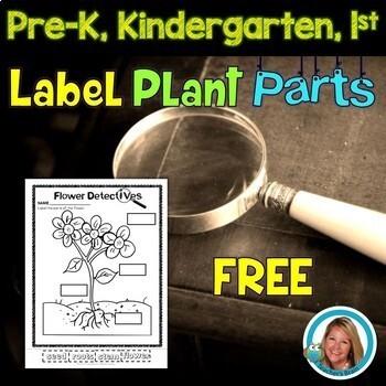 Plants - Label the Plant Parts Freebie Worksheet