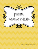 Plants Labs and Activities