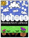 Plants Interactive Lapbook