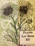 Plants Lap Book