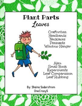 Plants - Leaves