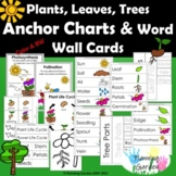 Plants, Leaves, Trees Anchor Chart & Word Wall