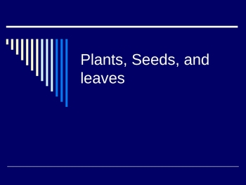 Plants, Leaves, and Trees powerpoint unit