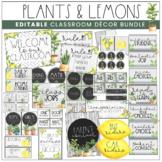Plants & Lemon Theme Classroom Decor Kit