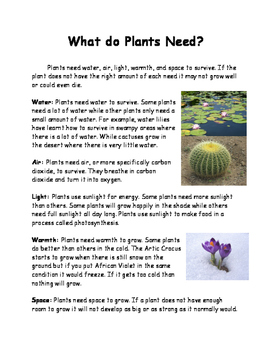 Plants Lesson 2 - Plant Needs
