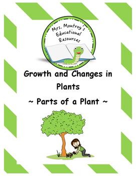 Plants Lesson 4 - Parts of a Plant