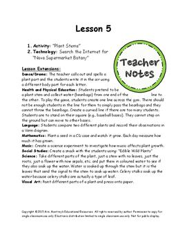 Plants Lesson 5 - Plant Stem Experiment