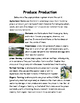 Plants Lesson 9 - Agricultural Farming