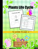 Plants Life Cycle  Fun Activities For Grade 1-3