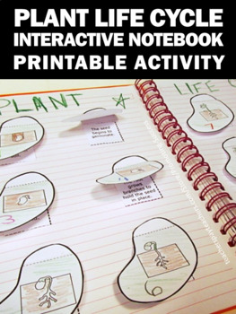 Plant Life Cycle Cut and Paste Activity, Plants Interactive Notebook