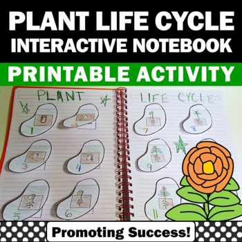 Plant Life Cycle Interactive Notebook Craftivity for Scien
