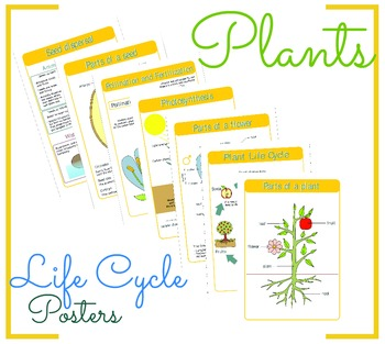 Plants Life Cycle Posters
