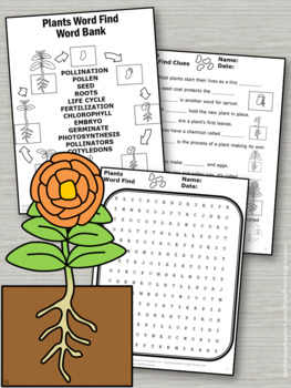 plant life cycle worksheets science plants unit supplement tpt. Black Bedroom Furniture Sets. Home Design Ideas