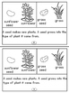 Plants Mini Readers Set One For Primary