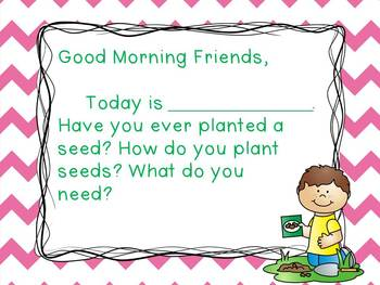 Plants - Morning Messages