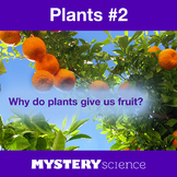 Plants NGSS:Fruits and Vegetables ❤ BUNDLE:Activity, Reading,Assessment—SALE