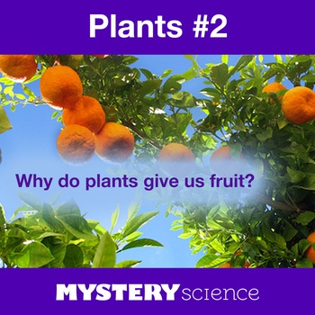Plants NGSS:Fruits and Vegetables ❤ BUNDLE:Activity, Readi