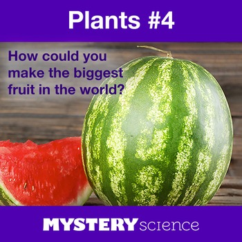 Plants NGSS:Inherited Traits, Fruits ❤ BUNDLE:Activity, Reading,Assessment—SALE