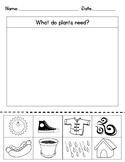 Plants Needs