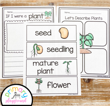 Plant Activities No Prep Pack Math, Literacy and Science